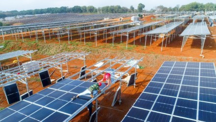Workers install solar panels in a solar farm.