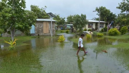 A flooded area of lawn on a Pacific Island, with houses in the background, and a child walking through the flooded grass.