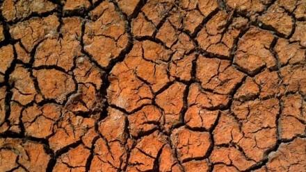 Drought-stricken land.