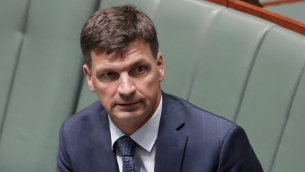 Minister Angus Taylor during Parliamentary Question Time.
