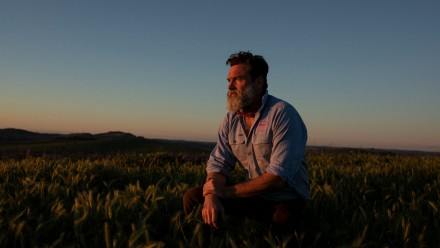 A photograph of Charlie Arnott, a regenerative and biodynamic farmer, kneeling in a grassy paddock as the sun sets.