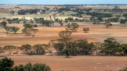 IPCC climate change and land
