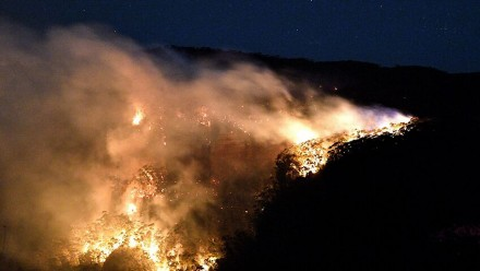 An aerial night-time photograph of a bushfire.