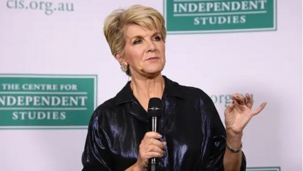 Julie Bishop has said the Coalition made 'missteps' when responding to bushfires over the summer and has put Australian National University scientists at the government's disposal.
