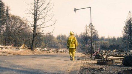 A firefighter walked through a burnt-out stretch of road.