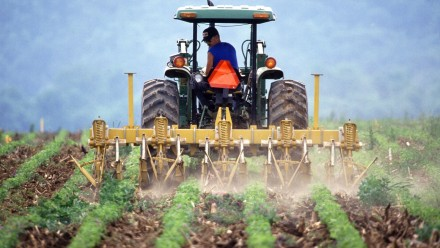 A farmer driving a tractor ploughs a field.