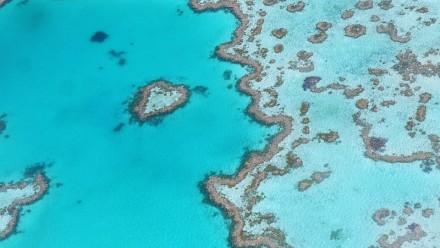 Aerial photo of Heart Reef, Queensland