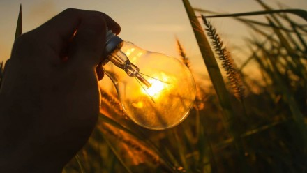 A lightbulb being held up against a sunset, in a field of long grass.