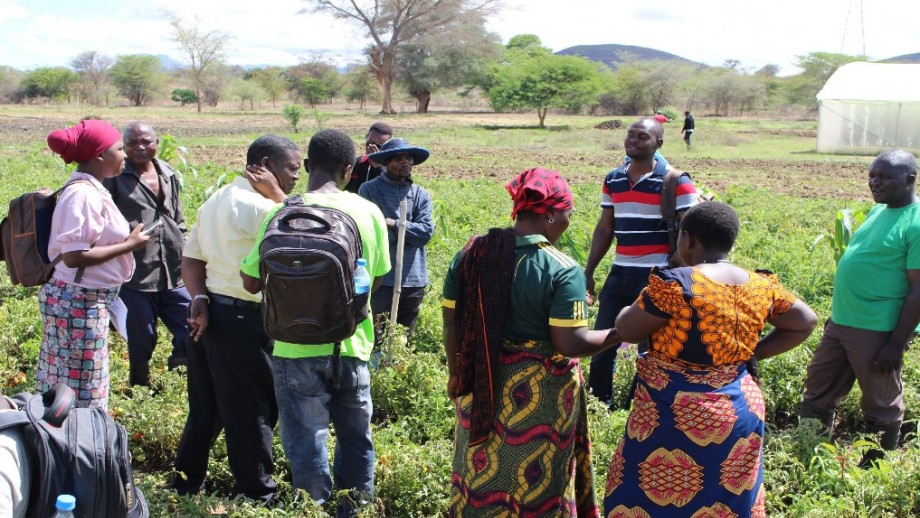 A group of stakeholders in south Africa standing in an agricultural field.