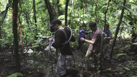 Researchers carrying experimental equipment on Barro Colorado Island, Panama.