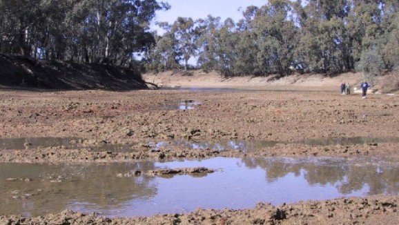 The dry muddy bed of Murray River in drought with a small puddle in the foreground