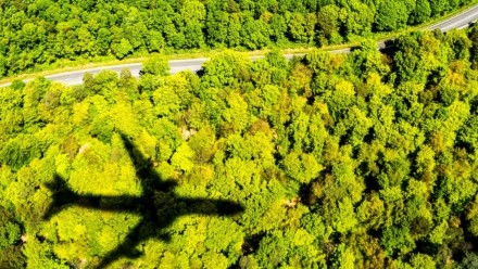A photograph of a plane's shadow on top of a forest.