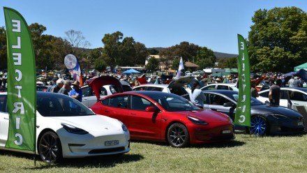 A row of Tesla electric vehicles at a car show in Queanbeyan, NSW