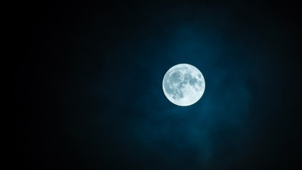A photograph of the moon in the night sky.