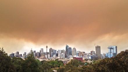 View of Sydney skyline during bushfires.  Image: Andrea Schaffer Flickr