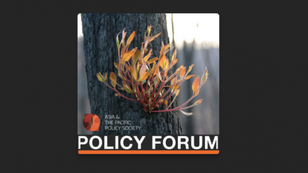 The policy forum heading, with a photograph of a burnt tree trunk with new leaf growth sprouting from it.