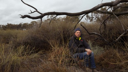 A photograph of Paul Porter, a fifth-generation farmer, sitting under a dead grey box tree amid indigo bushes and lignum in part of the Mirrool Creek on his property in the Riverina.