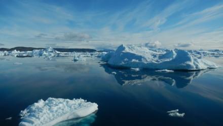 Icebergs float in the ocean in the Arctic region