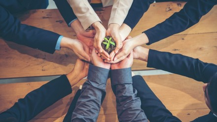 Corporate hands holding plant, Shutterstock